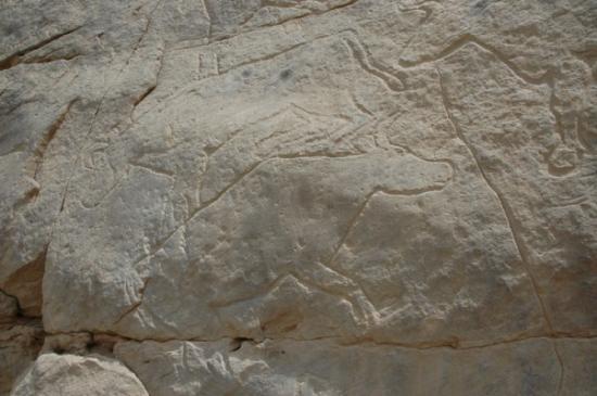 09-qurta-antiquity-press-photo-13.jpg
