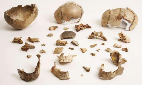 1 palaeolithic