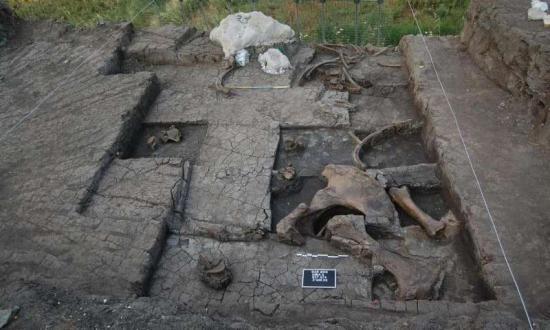 1 paleolithice