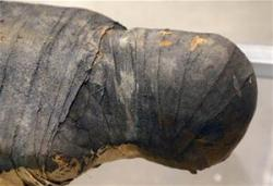 1025342 6 20150629101025 mummified remains found in indiana