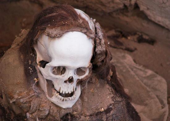 1200pxchauchilla cemetery skull jpg crop promo large2