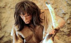 121004-sci-neanderthalex-jpg-crop-article250-medium.jpg