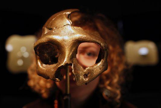 1311930-5-762d-le-crane-d-un-neandertalien-au-musee-de-ab6a0420ee705189d628eac68ff551d3.jpg