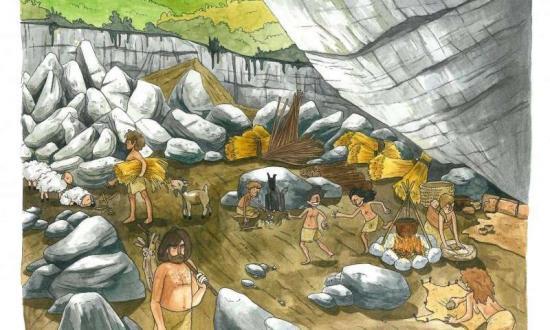 2 ancientgenom