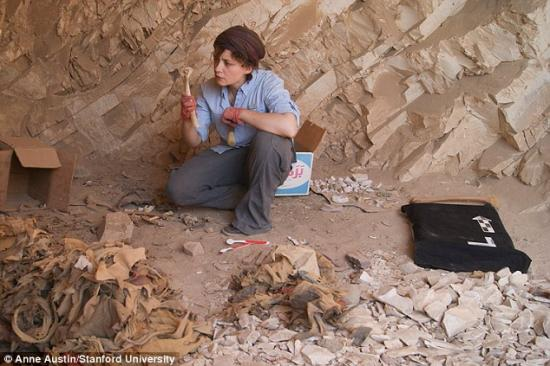 25bd4ac000000578 2955864 ancient texts found among human remains pictured with lead archa a 27 1424106644102