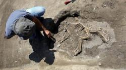 3000 year old dog skeleton found in urartu dig in van turkey 9776 720 400