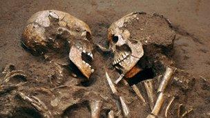 60530871-skeletons.jpg