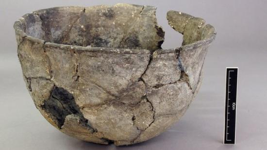 65847192-digwpex-neo-bowl.jpg