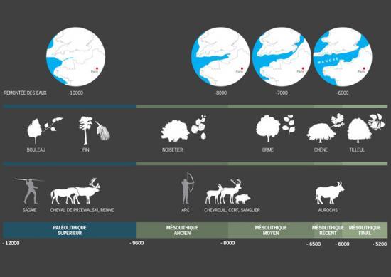 670x510-7235-vignette-3-evolution-habitat.jpg