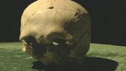 67330452-skull.jpg