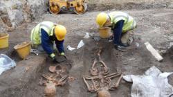 93813649 skeletons