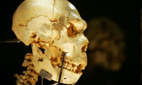 a-skull-from-one-of-the-b-008.jpg