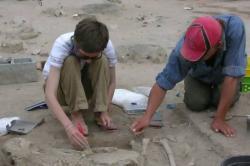 ad20121016961314-the-archaeologi.jpg