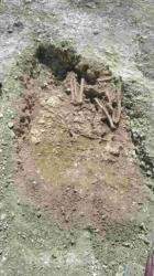 amesbury-ancient-skeletons.jpg