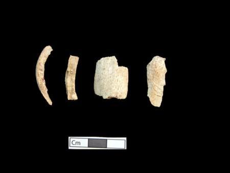 Amphipolis osta 12 en 450x338