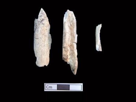 Amphipolis osta 13 en 450x338