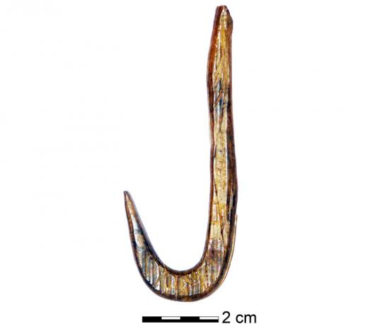 ancient-fish-hook.jpg