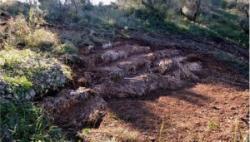 Ancient greek theater 300x171