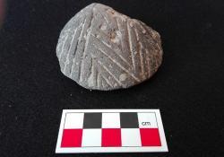 Antiquity 770x540