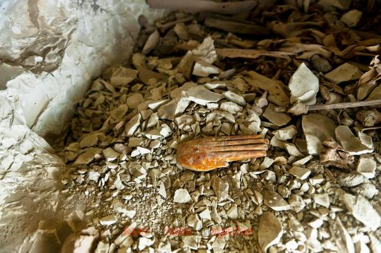 Arce discover satmut tomb in qurna by luxor times 5
