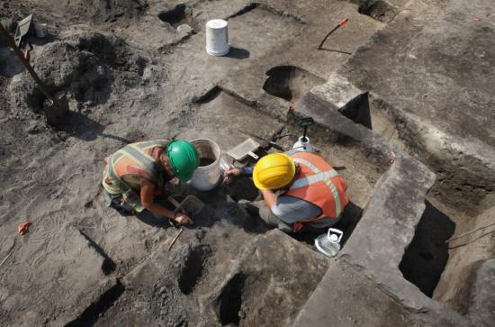 archeological-study.jpg