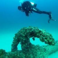 art-353-6-qpws-inspection-dive-aarhus-200x0.jpg