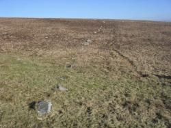 bancbryn-stone-row-looking-north-east.jpg