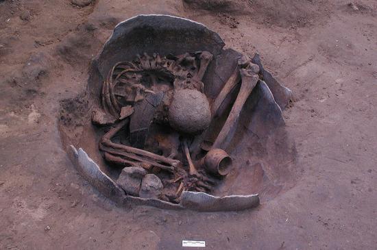 bannonwathellokorat3wiki.jpg