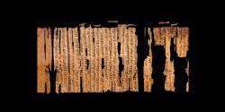 bark1-578x289.jpg