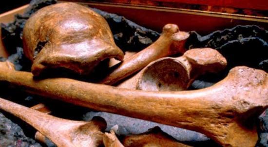 Bones neanderthal 01