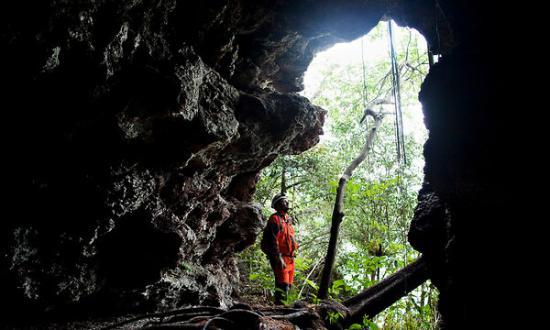 bull-cave1-articlelarge.jpg