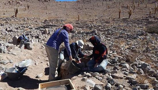 Chilean team members excavating ancient terraces 1 413deaf3 ef70 4ff1 ba27 4ee7990eeaf7 prv