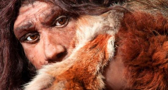 Close view of a neanderthal man shutterstock 800x430
