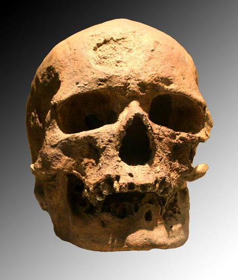 cro-magnon-skull-fossil.jpg