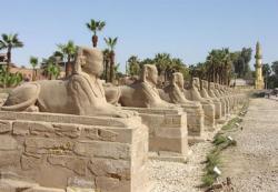 egypt-luxor-sphinx.jpg