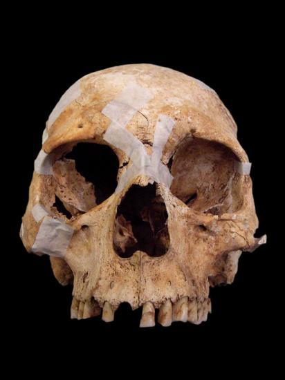 England roman skull