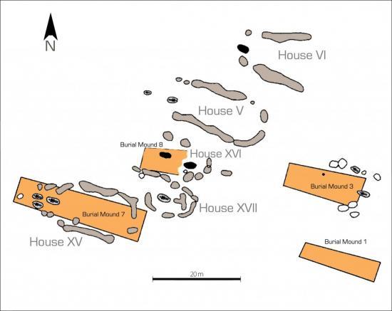 fig3-1.jpg