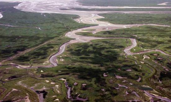 Floodsaswarw