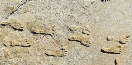 Fossil footprints prov