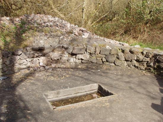 fulacht-fiadh-irish-national-heritage-park.jpg