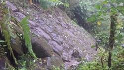 Gi 61109 stone