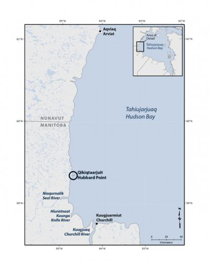 Hubbard point map digi