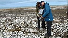 ii-archeologists-img-7415-b.jpg
