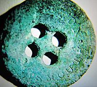 ii-button-img-7429-bc.jpg