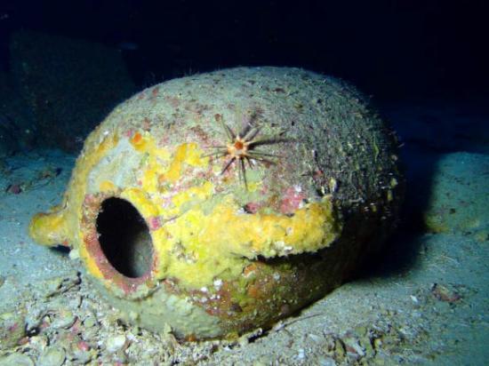 Image 2118 4 phoenician shipwreck