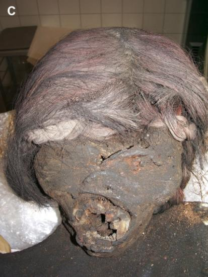 Incan mummy