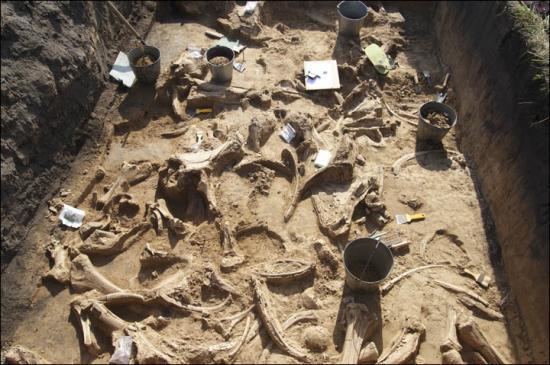 Inside excavations 1