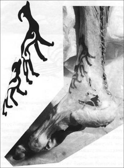 Inside male tattoo 4
