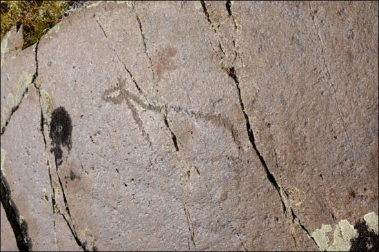 Inside petroglyph