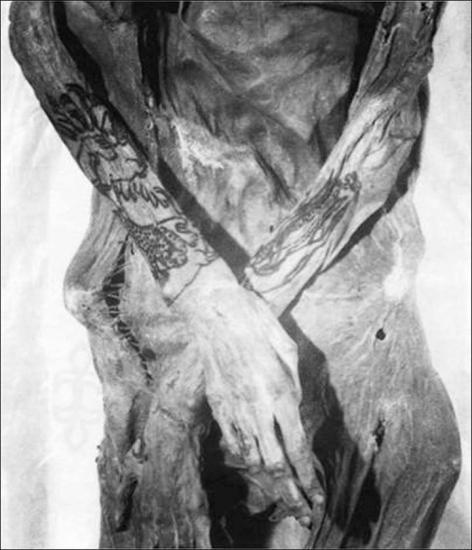 Inside tattoo female 1